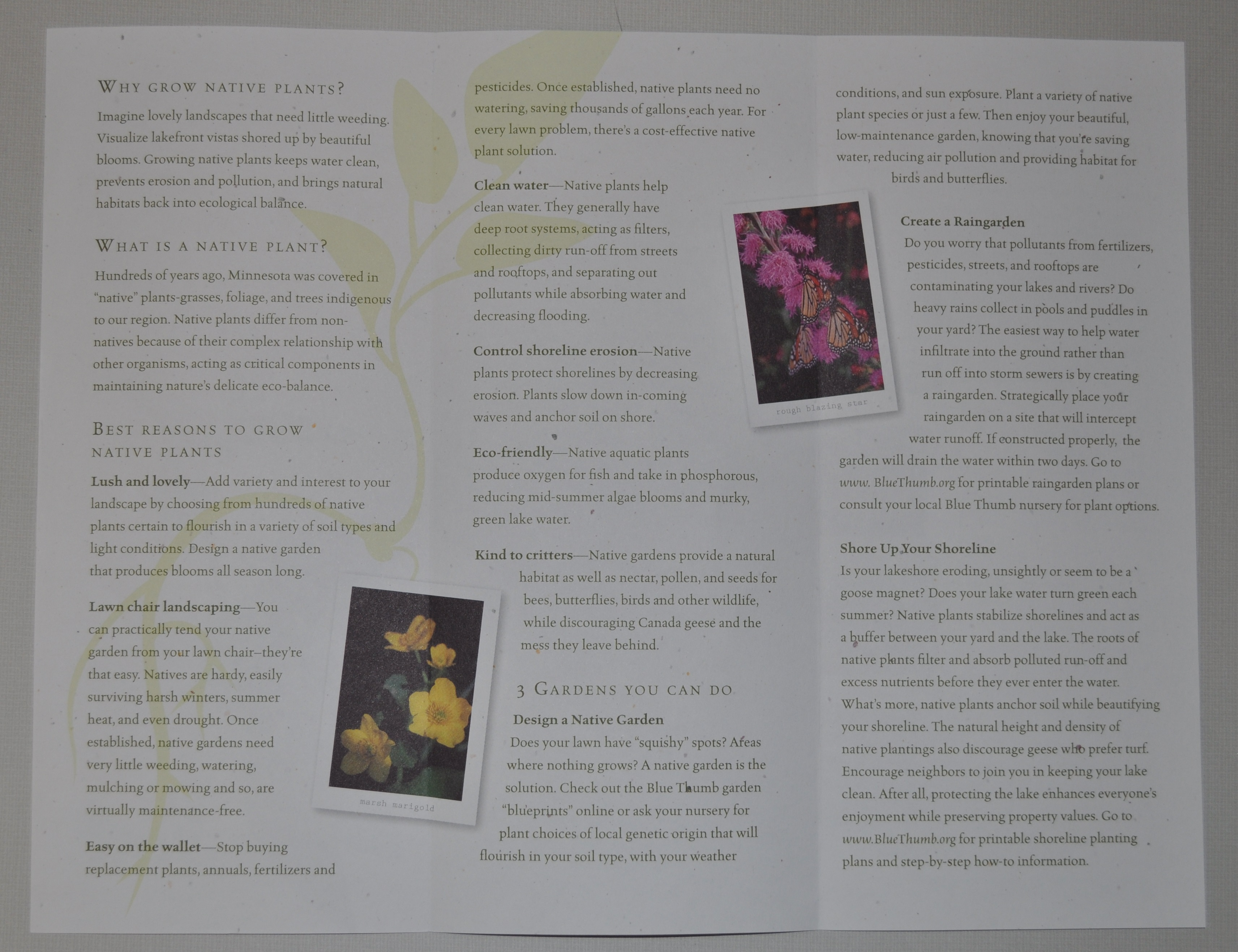 secrets of leisurely landscaping brochure inside