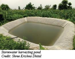 Stormwater harvesting pond