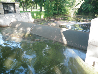 Adjustable Fixed Weir
