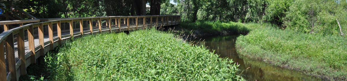Boardwalk at the Minnehaha Creek Preserve in St. Louis Park