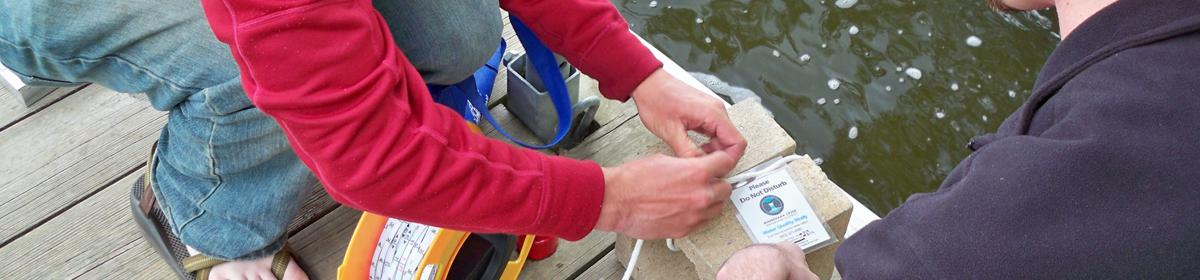 Water Quality assistants installing a zebra mussel sampler