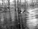 1944 High water on Minnehaha Creek