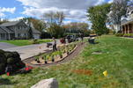 Saunders rain garden planting