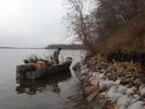 Person in boat hauling willow plugs near shoreline