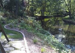 Buffer on creek shoreline