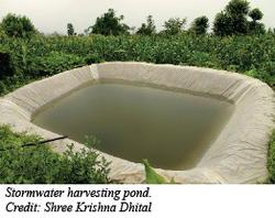 Stormwater harvesting pond